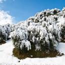 07_Neve in proporzione